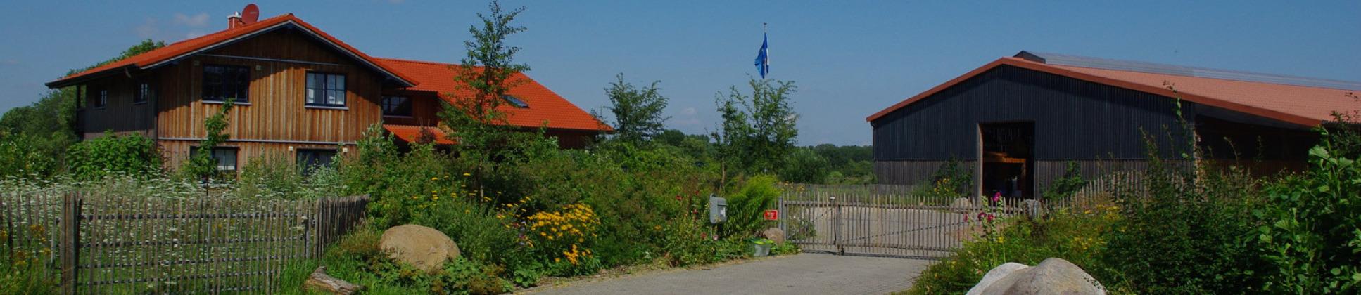 Alpaka Hof Wiedwisch