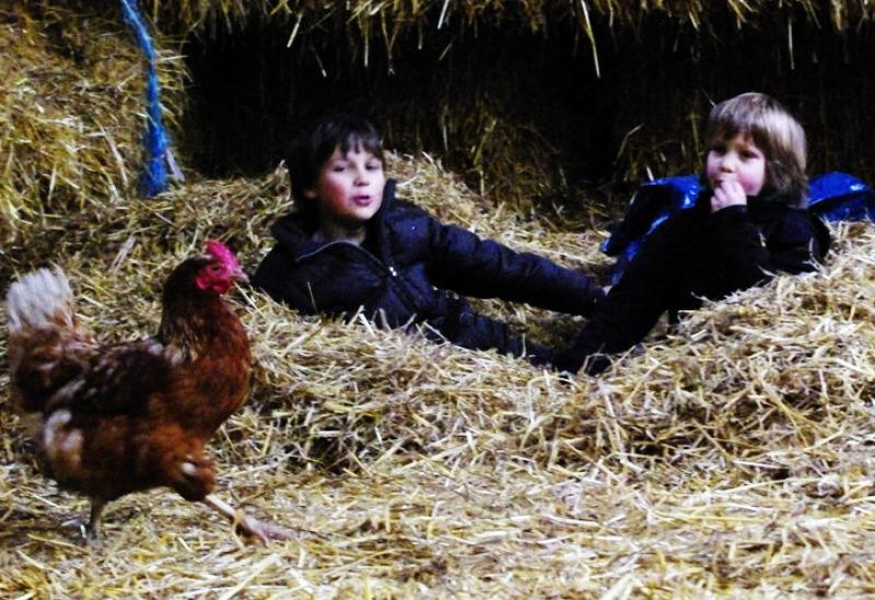 Geburtstag auf dem Bauernhof